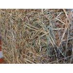 Grünhafer in 18 kg Beuteln - rohfaserreicher und stärkearmer Getreideersatz